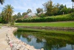 高尔夫球池塘 库存照片