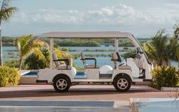 高尔夫球汽车停放反对热带背景 免版税库存照片
