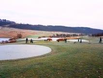 高尔夫球法院的冻池塘 库存照片