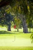 高尔夫球漏洞 免版税库存图片