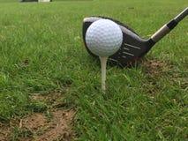 高尔夫球的发球区域 免版税库存图片