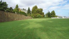 高尔夫球的绿色领域 股票视频