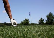 高尔夫球目标 图库摄影