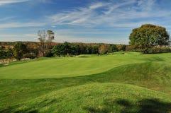 高尔夫球绿色俯视 免版税库存图片