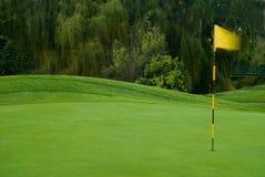 高尔夫球绿色有风 免版税库存照片