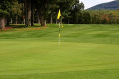 高尔夫球绿色 库存图片