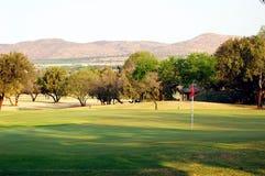 高尔夫球绿色 免版税库存图片