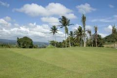 高尔夫球绿色 图库摄影