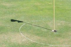 高尔夫球草绿色漏洞 免版税库存照片