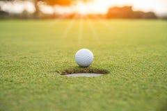 高尔夫球运动员在绿草上把高尔夫球放在比赛的高尔夫球场有迷离背景 库存图片