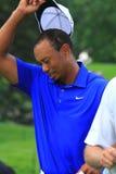 高尔夫球运动员老虎・伍兹 库存图片