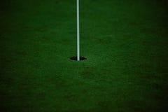 高尔夫球针 免版税库存照片