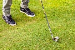 高尔夫球铁俱乐部 免版税库存图片