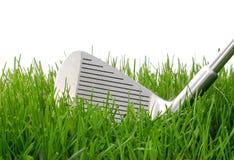 高尔夫球铁 免版税图库摄影