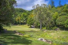 高尔夫球领域,塞舌尔群岛 免版税库存图片
