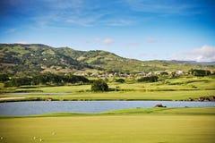 高尔夫球领域 免版税库存图片