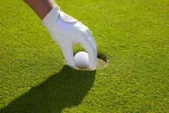高尔夫球从孔被得 免版税图库摄影