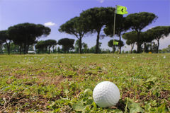 高尔夫球轻击棒和球 库存照片