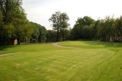 高尔夫球-绿色 库存照片