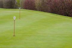 高尔夫球绿色特写镜头 免版税库存照片