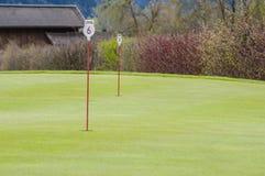 高尔夫球绿色特写镜头 库存图片