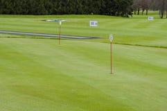 高尔夫球绿色特写镜头 免版税库存图片