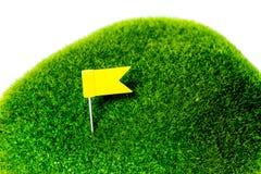 高尔夫球绿色黄旗 库存照片