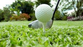 高尔夫球 免版税库存照片
