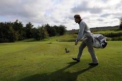 高尔夫球 免版税库存图片