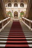 高尚的楼梯 库存照片