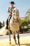 高尚的马和车手 库存图片