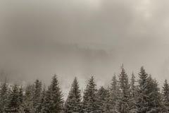 高山冬天风景,与新鲜的雪和薄雾,在一明亮的天 库存图片