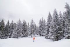 高山冬天风景,与新鲜的雪和薄雾,在一明亮的天 免版税图库摄影