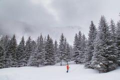 高山冬天风景,与新鲜的雪和薄雾,在一明亮的天 免版税库存图片