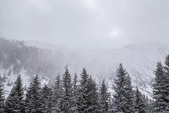 高山冬天风景,与新鲜的雪和薄雾,在一明亮的天 库存照片