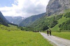 高山冰川山的远足者 图库摄影