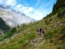 高山冰川山的远足者 免版税库存照片