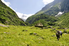 高山冰川山的远足者 免版税库存图片