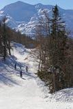 高山区滑雪 免版税图库摄影