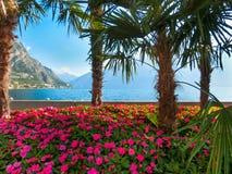 高山和走道在岸,加尔达湖,意大利,欧洲 免版税库存图片