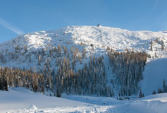高山场面,白云岩,北意大利 免版税库存照片