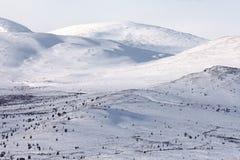 高山寒带草原冬天 免版税库存照片