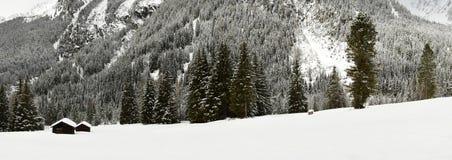 高山小屋和森林冬天风景视图在Antholz湖,意大利阿尔卑斯,南提洛尔附近的阿尔卑斯 免版税图库摄影
