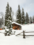 高山小屋在冬天在阿尔卑斯 冬天风景在湖Antholz Anterselva,南提洛尔附近的一个森林里 免版税库存图片