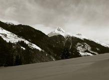 高山峰顶全景在新鲜的雪的 库存图片