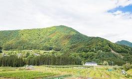 高山市木拉在晴朗的夏天或春日和蓝天美好的风景在Kamitakai区在东北长野 免版税库存照片