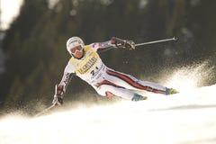 高山杯子fis赛跑滑雪世界 库存图片