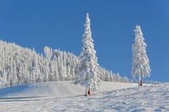 高山横向冬天 图库摄影