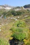 高山步行的人 免版税库存照片