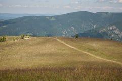 高山牧场地和道路 免版税库存图片